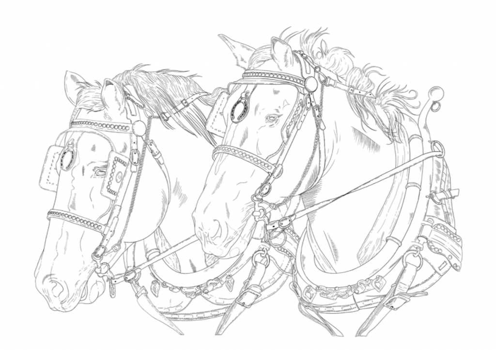 Draft horse team colouring page printable