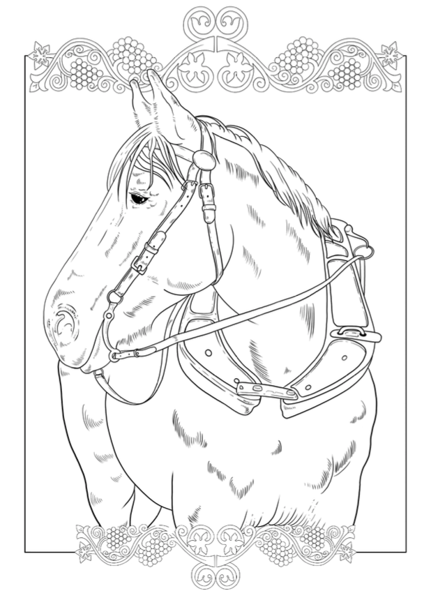 Free Dutch Draft Kiona Colouring Printable